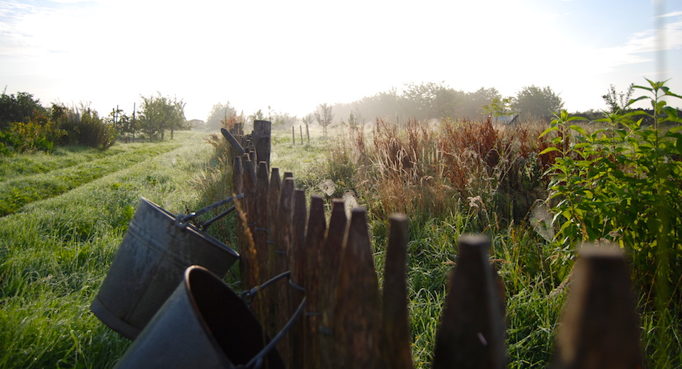 Biohof Altes Land