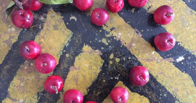 Apfelliebe & Genussmarkt