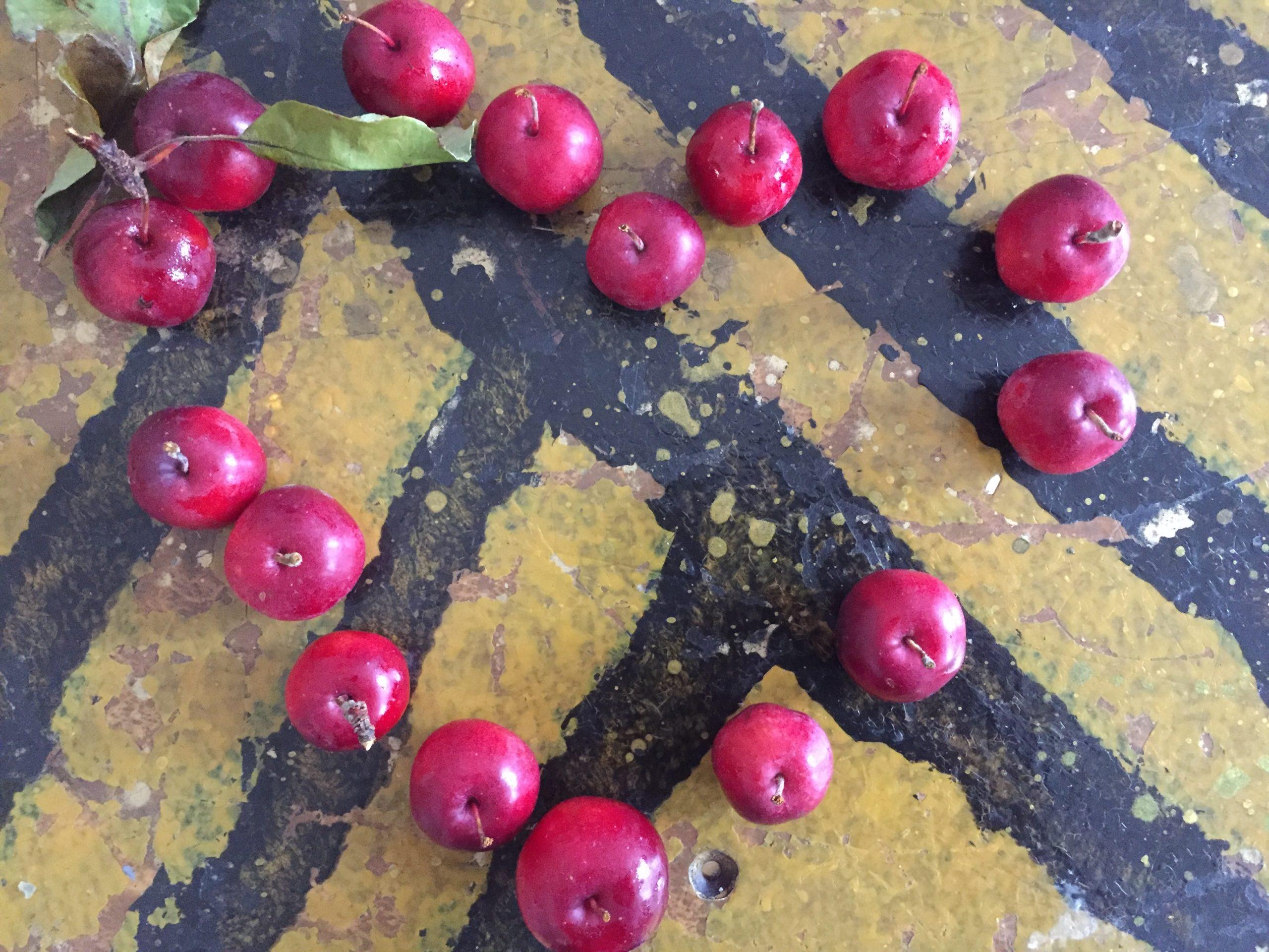 Abgesagt!                   Apfelliebe & Genussmarkt